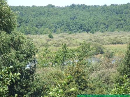 Stage N5 Gyékényes (HU) – Nagyatád (HU): Experience the Kaszó forest and become rejuvenated in Nagyatád