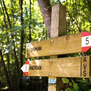 path nr. 5
