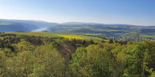 Turm Spitzer Stein Aussicht Oberwesel