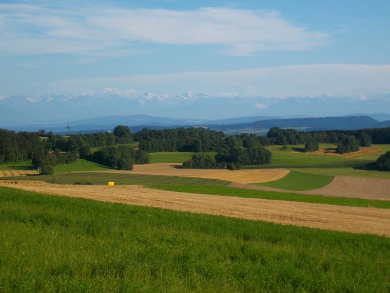 Waldshut-Tiengen: Wildes Schwarzatal