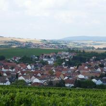 Blick ins obere Selztal zum Donnersberg