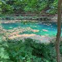 Burgalb-Quelle