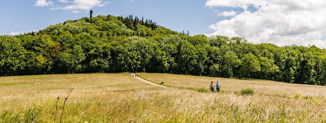 Wandern in der Urlaubsregion Altenberg im Erzgebirge