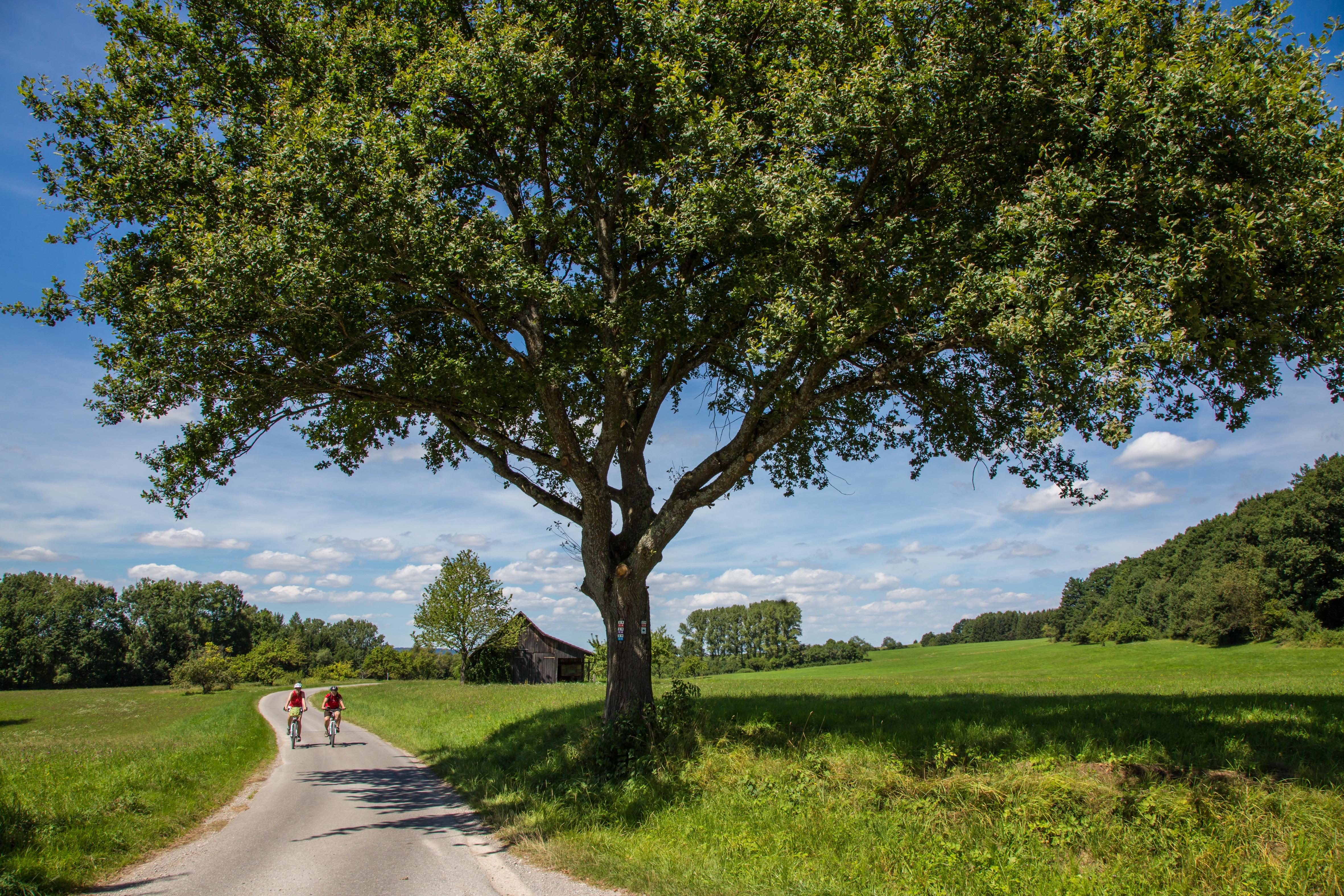 Radweg von Hechingen-Stetten nach Hechingen-Boll