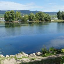 Fischer am Nebenarm und Blick zum Rheingau