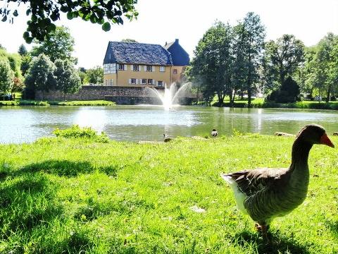 Blick auf Gustavsburg über den Schlossweiher