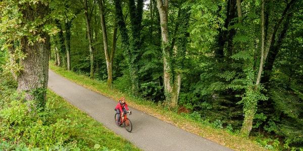 Kaum lässt man die Goldstadt Pforzheim hinter sich, schon erwartet den Radfahrer wieder viel Natur