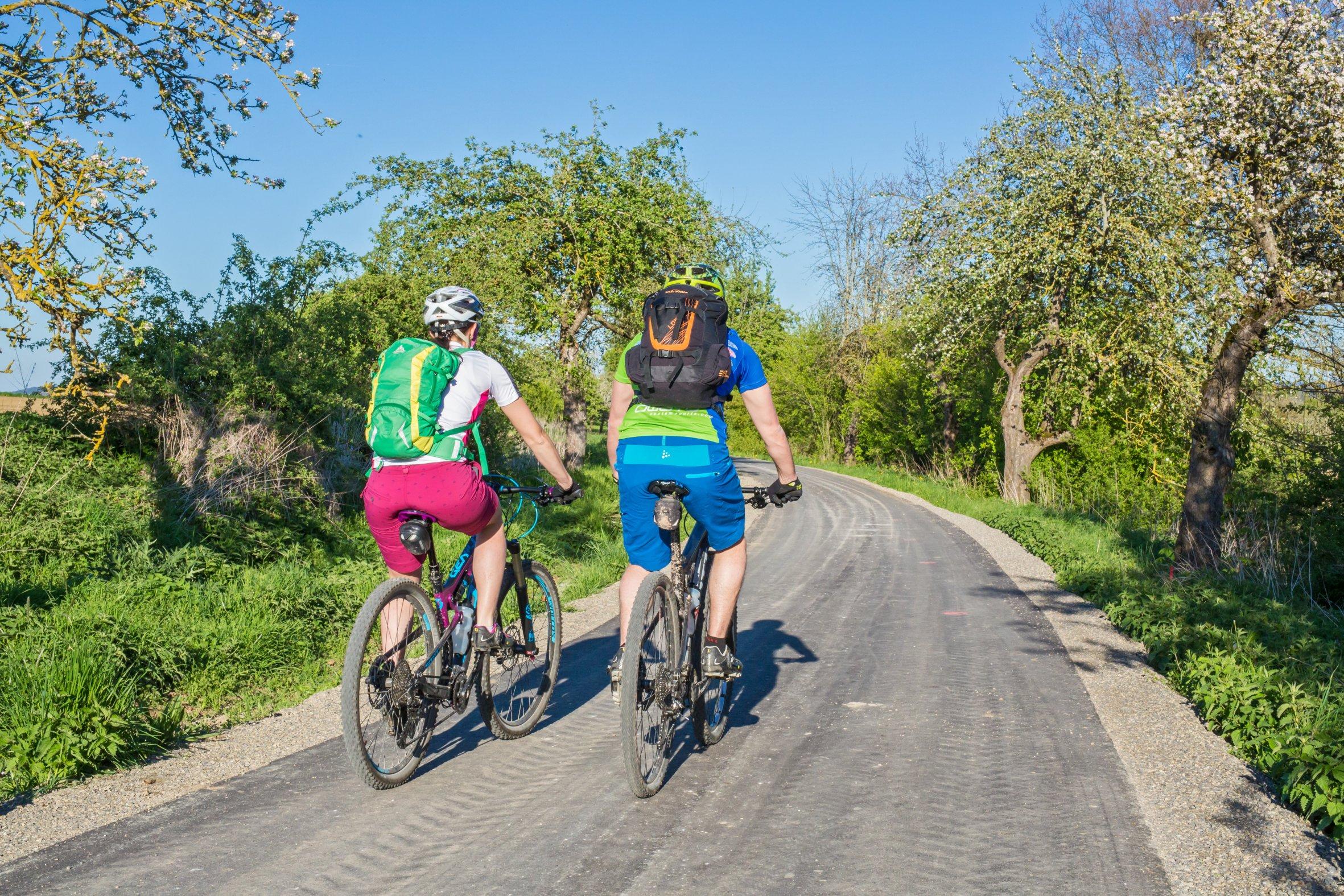 Zwei Radfahrer von hinten auf asphaltiertem Weg, umgeben von Bäumen und Sträucher
