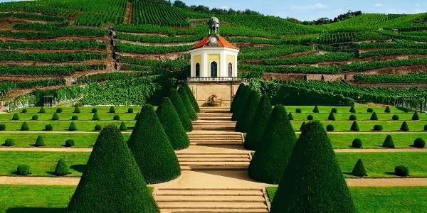 Schloss Wackerbarth-Belvedere