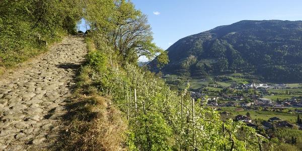 Sentiero Burgweg