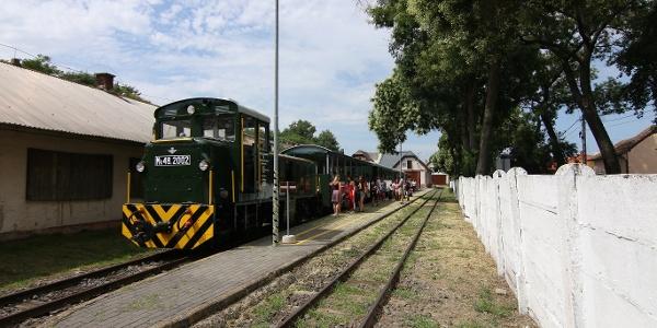 Zsuzsi Erdei Vasút (Debrecen-Fatelep állomás)