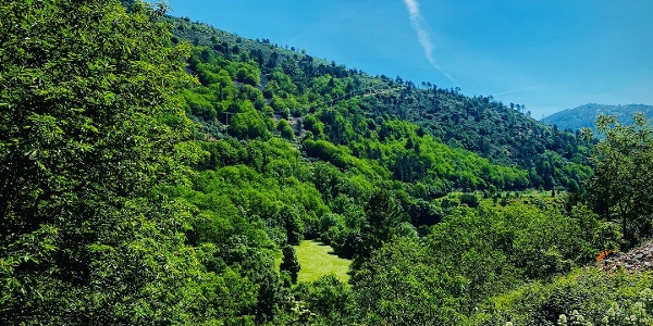The Wild Start - Manteigas > Vale de Amoreira - GRZ: Stage 2