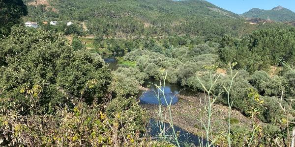 Meanders - Janeiro de Cima Rest Area > Janeiro de Baixo - GRZ: Stage 3