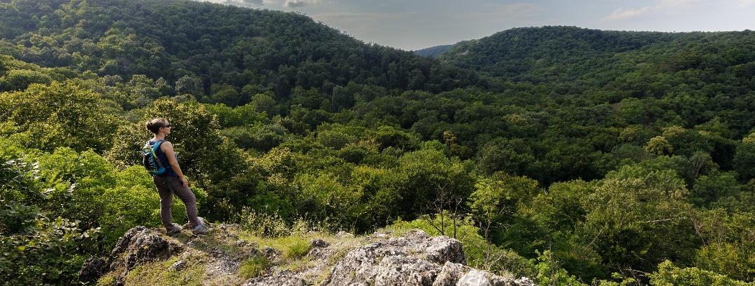Kilátás a Gaja-völgy felé a Vaskereszt közeléből