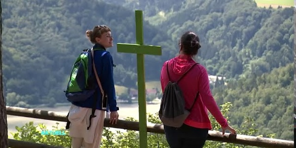 Donausteig Wanderung in Haibach am CICONIA-Rundweg