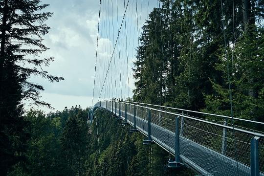 Hängebrücke WILDLINE