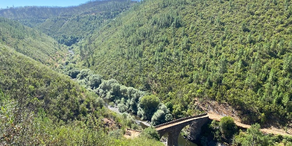 River Branches - Palhais > Fernandaires - GRZ: Stage 4
