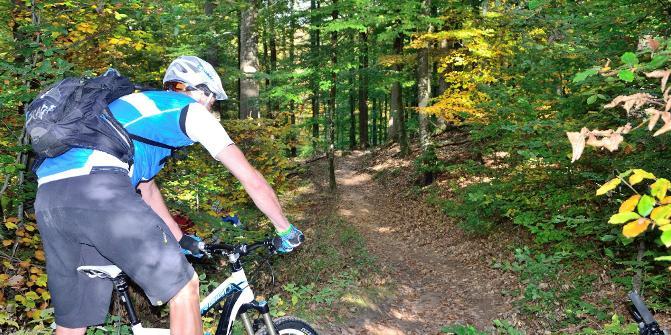 MTB in Lambrecht (Pfalz): Tourentipps für Mountainbiker