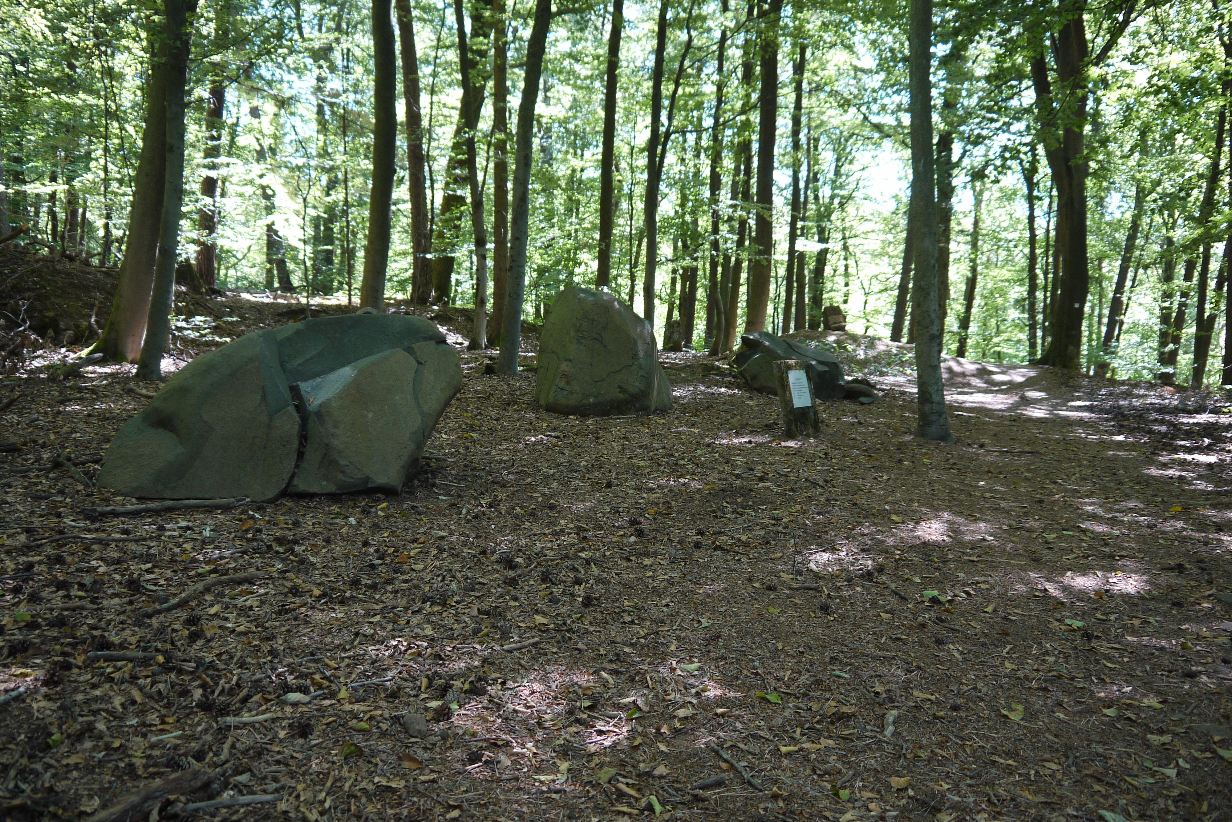 Steine des Geologischen Lehrpfads