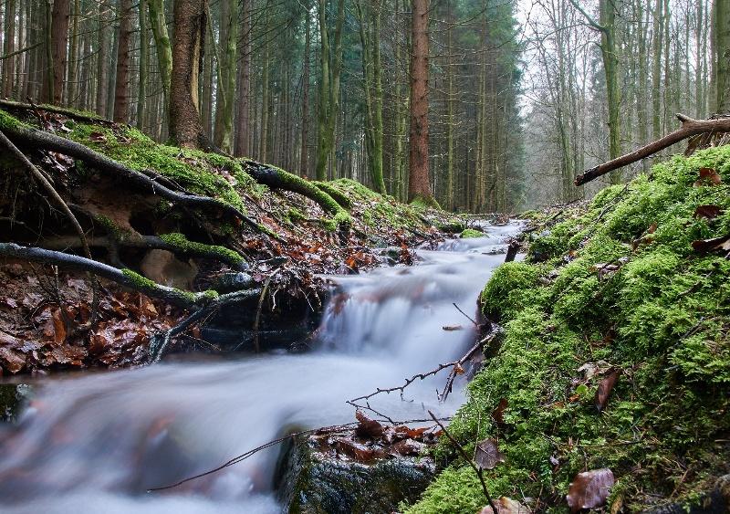 Rundweg 09 - Orbquelle Bad Orb | Badorb Tourismus