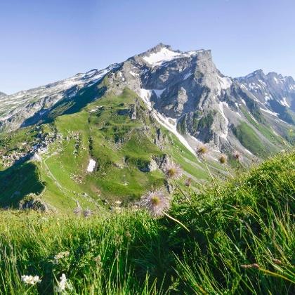Blick vom Augstenberg auf die Pfälzerhütte und den Naafkopf