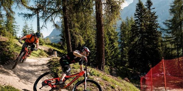Bike Beats - Avëna Trail
