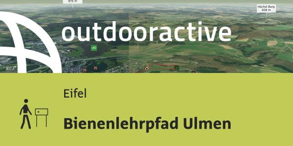 Themenweg in der Eifel: Bienenlehrpfad Ulmen
