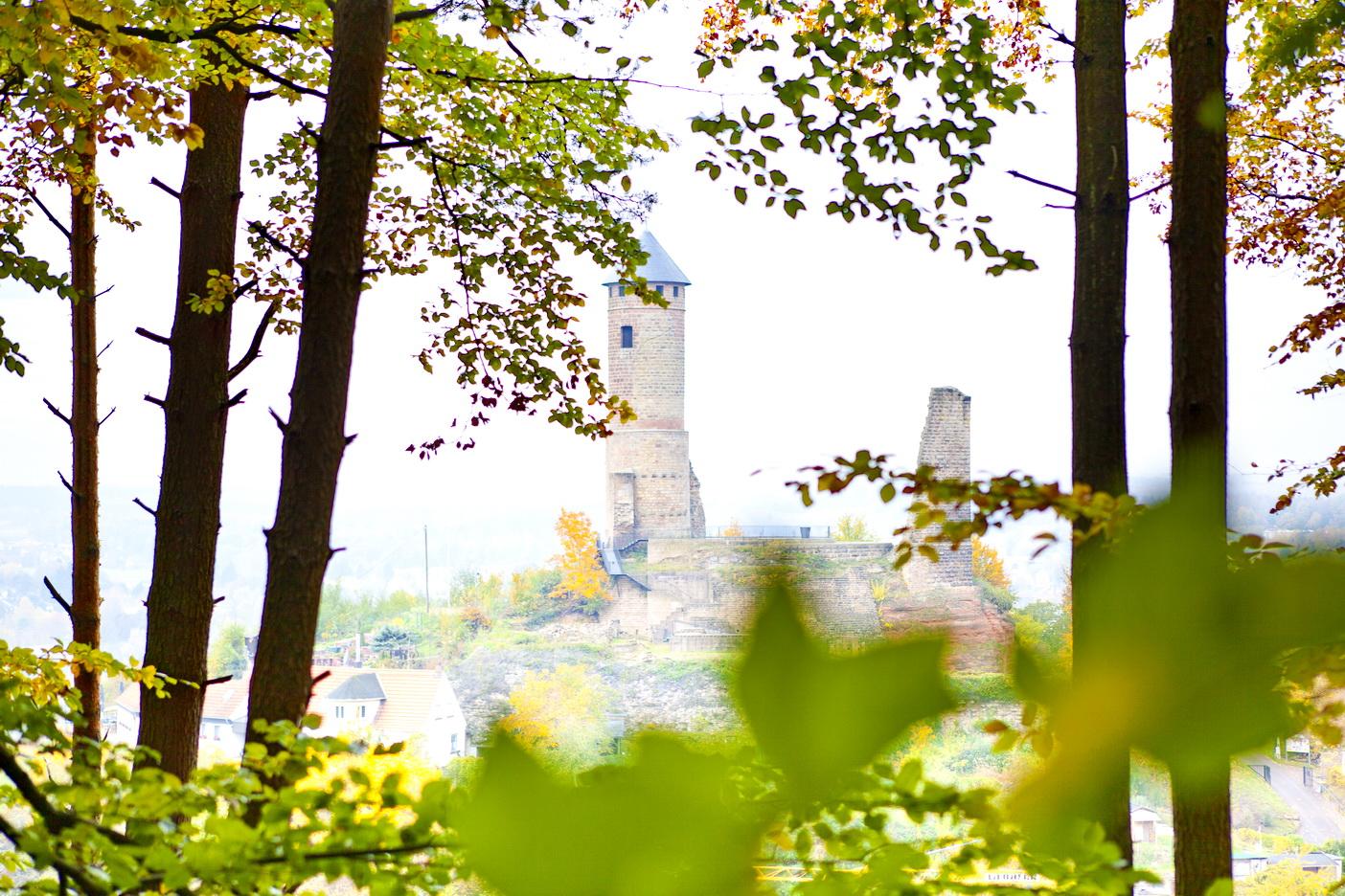 Kirkeler Burg vom Wald