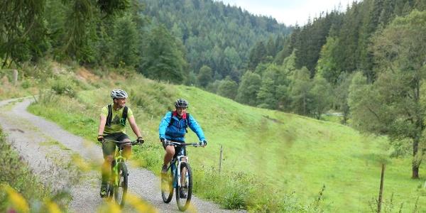 Unterwegs auf dem Enztalradweg (Enzklösterle - Bad Wildbad)