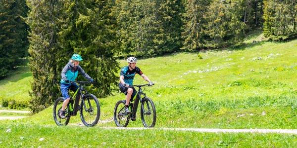 MTB_E-Bike3