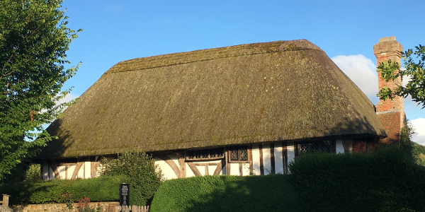 Thatched-roof cottages along the way