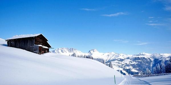 Panorama Winterwanderweg auf dem Hochplateau Grüsch-Danusa