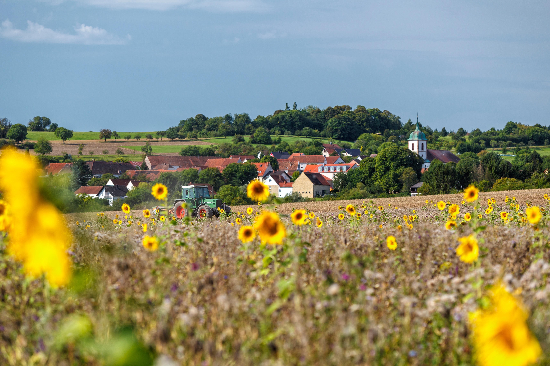 Blick auf Medelsheim