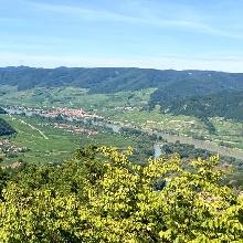 Blick von der Starhembergwarte in Dürnstein auf die Donau