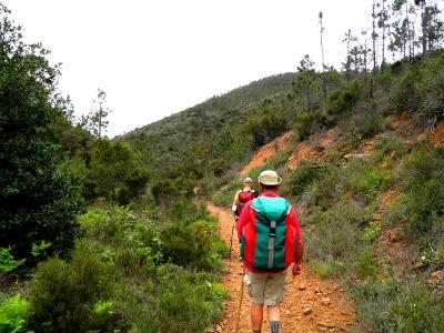 Pilgern - am liebsten single trails
