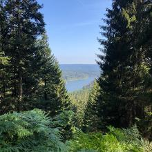 Blick auf die Schwarzenbach Talsperre