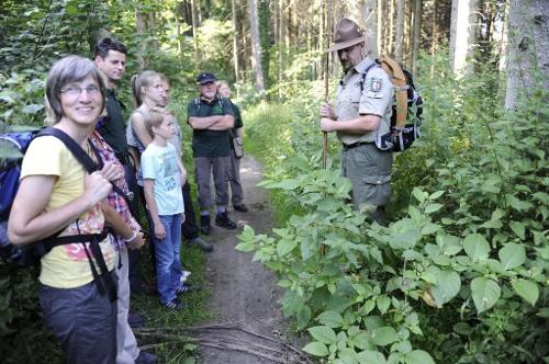 Balve: Auf dem Hönnepfad