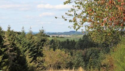 Blick auf Lambertsberg