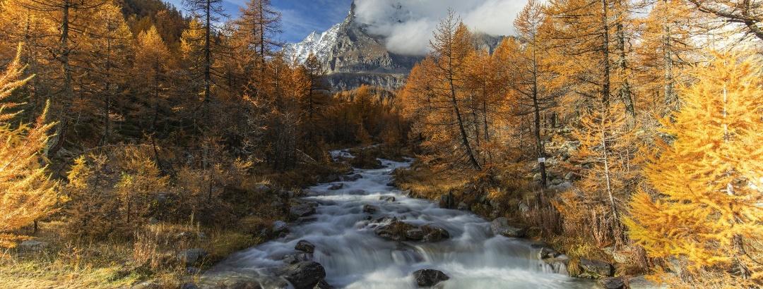 Alpe Veglia im Herbst
