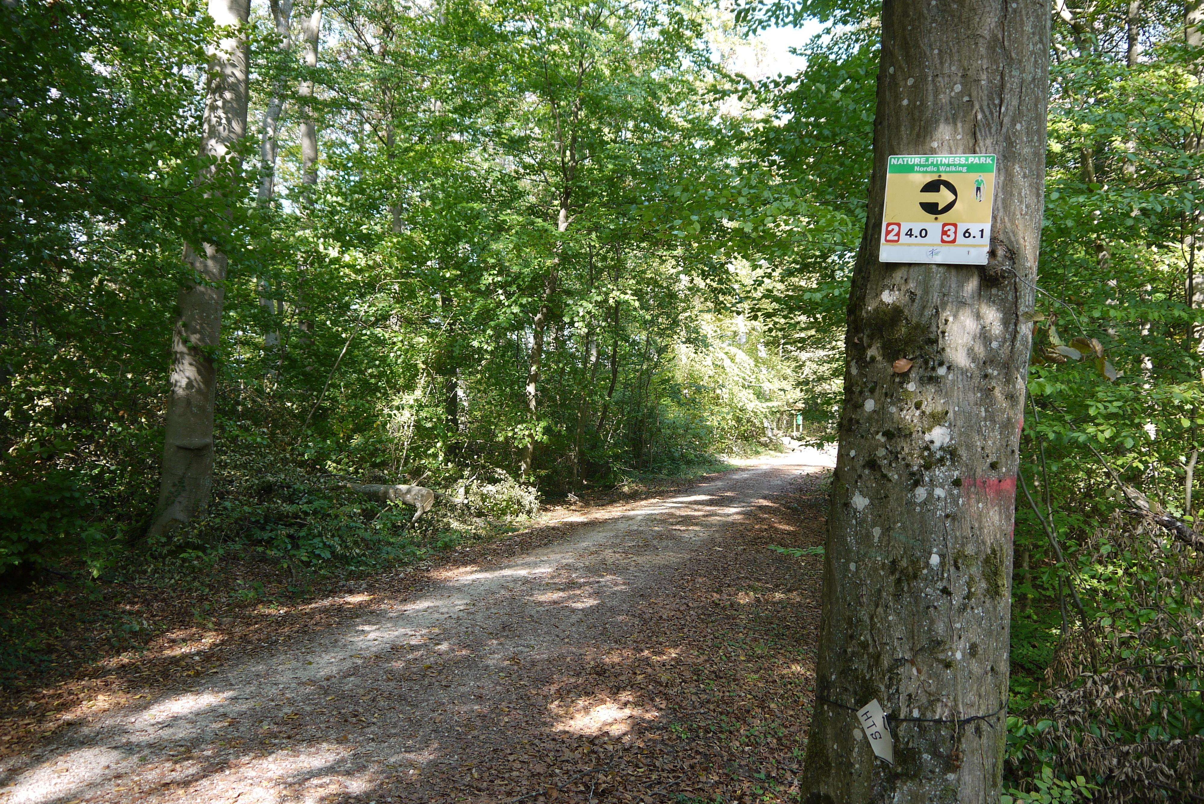 BODYmed-Tour Nordic Walking Park Ormesheim