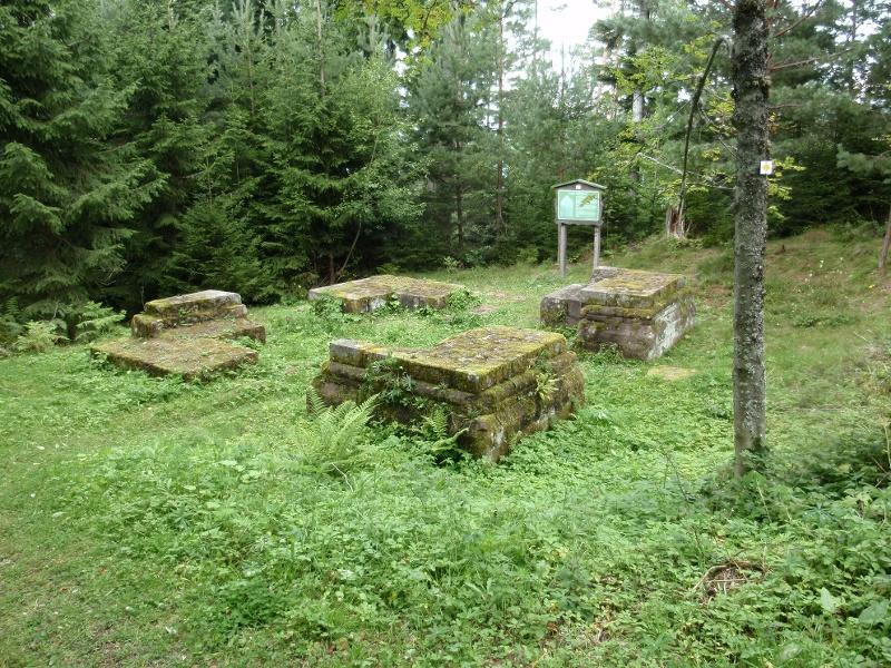 Über den Hilpertsberg  ins Nagoldtal
