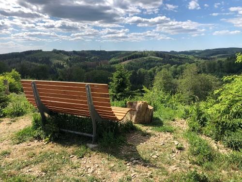 Wald-Aktiv-Pfad Heed