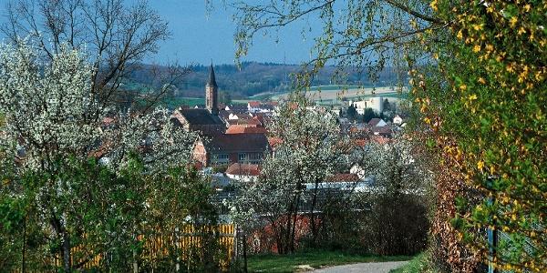 Blick auf Münzesheim