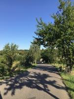 Foto Radweg bei Kaitz