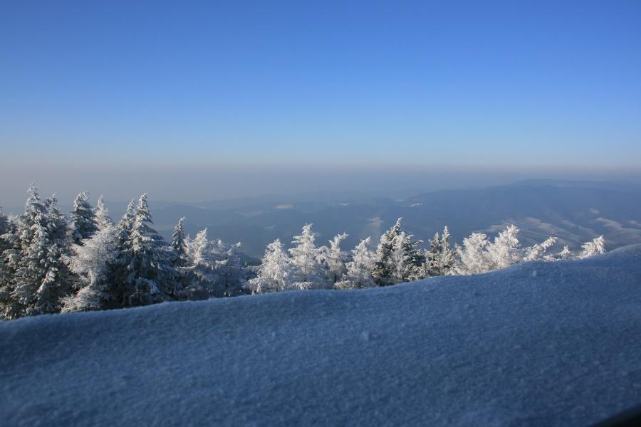 Zell a. H. / Winterwandern