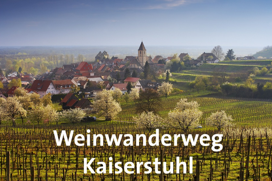Weinwanderweg Kaiserstuhl