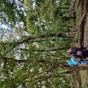 csajok az erdőben