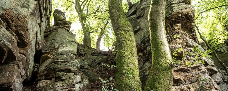Foto: Felsen bei der Mandrack Passage im NaturWanderPark delux, © Eifel Tourismus GmbH, D. Ketz