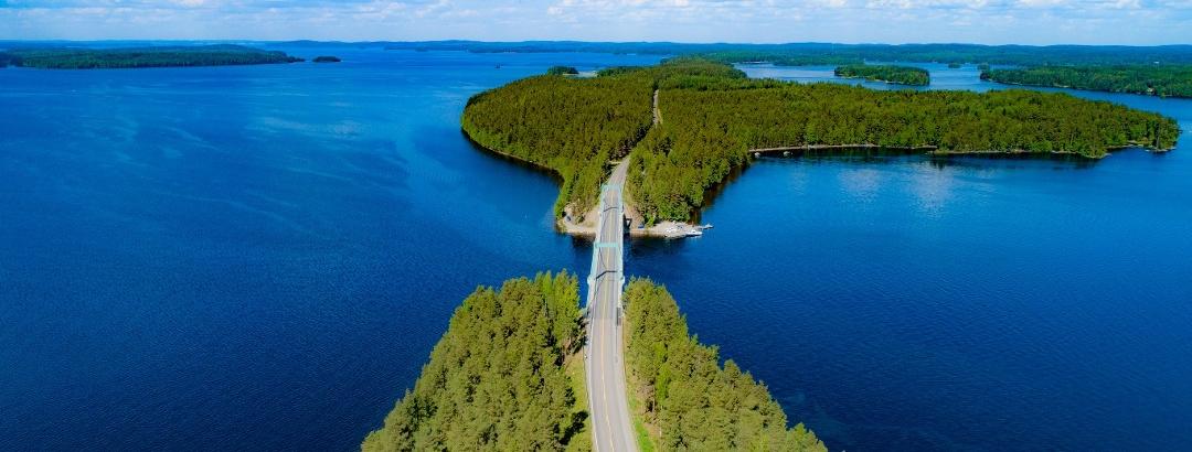 Pulkkilanharju esker in Päijänne National Park.