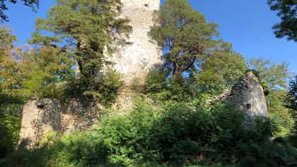 Ruine Altbodmann
